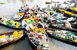 MEKONG TOUR : MY THO – BEN TRE 1 DAY