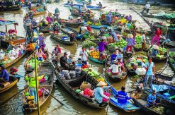 MEKONG DELTA TOUR 3 DAYS 2 NIGHTS